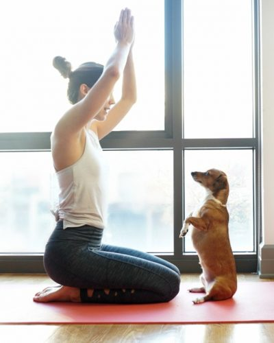 How To Practice Yoga With Your Dog